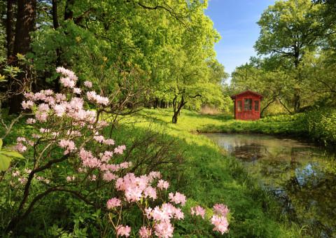 Gartenhaus_Teich_reduziert